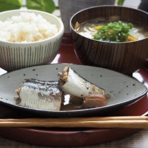 話題の「菌活」日本の発酵食品とその歴史を調べてみた