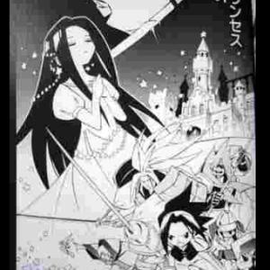 【漫画】終り方が完璧な漫画w㉓シャーマンキング