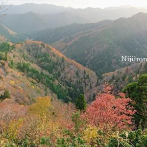 絶景「おにゅう峠」の紅葉を見に行く、細い道にヒヤヒヤする