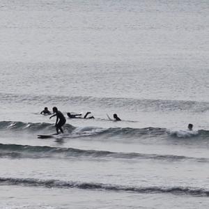 2020.1.25 10:00 湘南鵠沼の波