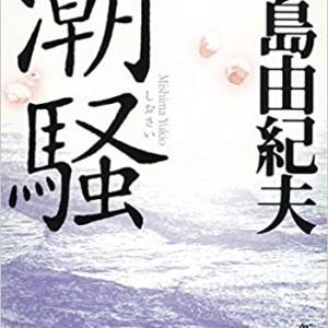 「潮騒」のネタバレ&あらすじと結末を徹底解説 三島由紀夫