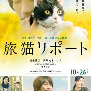 映画「旅猫リポート」のネタバレ&あらすじと結末を徹底解説 三木康一郎