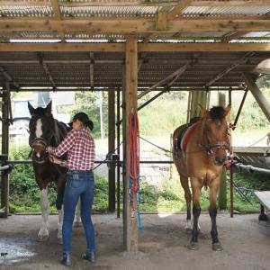 青い空と草原、心地いい風を感じた乗馬で「いい気分」チャージ【霧島・鵜戸神宮への旅②】