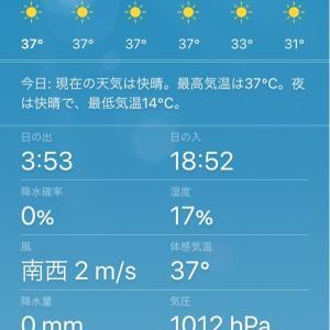 5月だけど北海道も37度☀️
