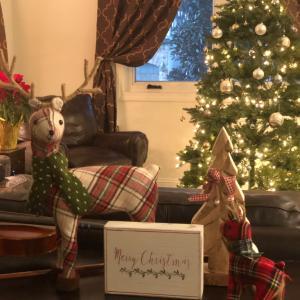 近況とクリスマスツリー