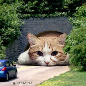 「もしも巨大な猫が私達の街にいたら」をテーマに写真を投稿するインドネシアのアーティスト