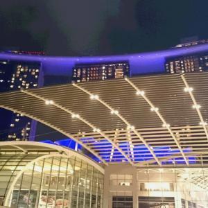 シンガポール旅行~カジノ編~