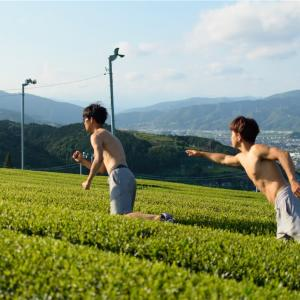 【日本一周チャリ旅】Vol.81 予想以上に茶畑が綺麗すぎた