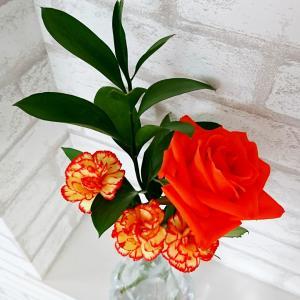 【Bloomee LIFEお花の定期便♡】画期的!!毎週ポストにお花が届く新サービス♡初回無料!