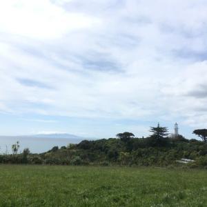 鳥の楽園Tiritiri Matangi Island