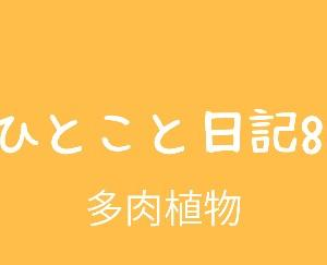 ひとこと日記8(多肉植物)
