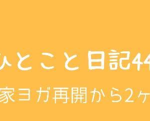 ひとこと日記44(お家ヨガ再開から2ヶ月)