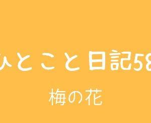 ひとこと日記58(梅の花)