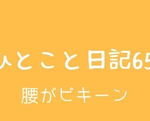 ひとこと日記65(腰がピキーン)