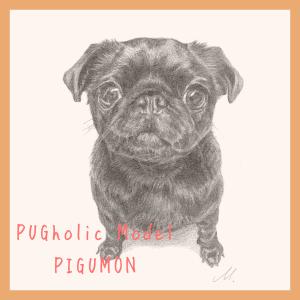 PUGholic特別企画 パグモデル原画Vol.3黒パグ「ピグモン」公開
