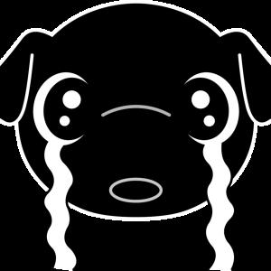 ペットの防災対策に必要な7つのこと