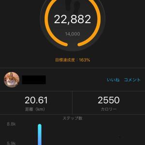 月間ステップ合計距離