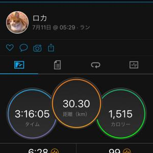土日セット練習 ~ワラーチ30キロ&20キロ走~