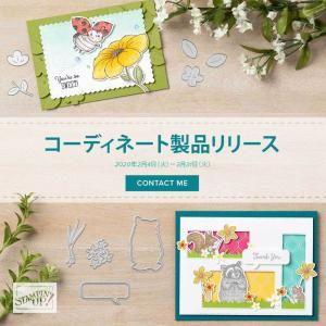 【2/4~3/31まで・PDFチラシ有】ミニカタログ&セラブレーション プレゼント品のコーディネイトアイテムが販売されます