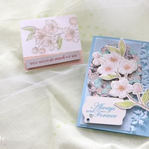 【3月クラス 使用アイテム】桜のカードセット