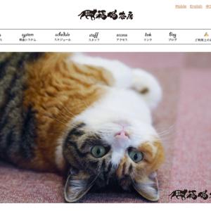 ねこに囲まれて猫ちぐら作りもできちゃう!【北海道|札幌】福猫茶房