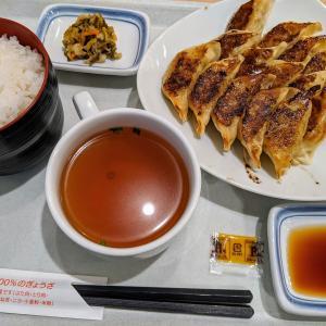 リンガーハットの薄皮ぎょうざ定食(15個)