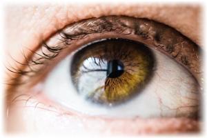 【瞳のUV対策】お気に入りの夏用目薬が見当たらない…【目薬】