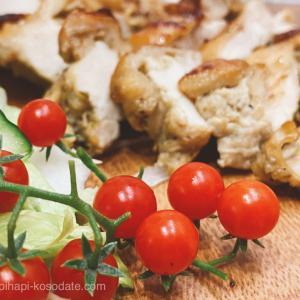 マイクロミニトマト放置栽培から4ヶ月!きまぐれ家庭菜園記