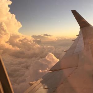 旅行好きだけど…飛行機苦手!そんなわたしがオススメする機内手荷物の中身と過ごし方
