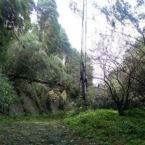 台風15号による千葉県内の被害状況の記録(最終更新:9月10日)