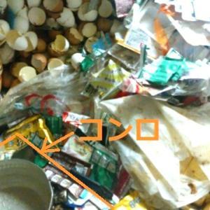 【衝撃!2】  片付けられない!ゴミの中で寝る女