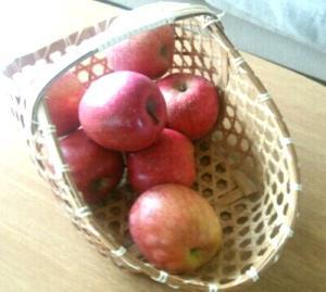 ティファニーで栄養満点な朝食を【不自然に変わる朝食のレシピ】