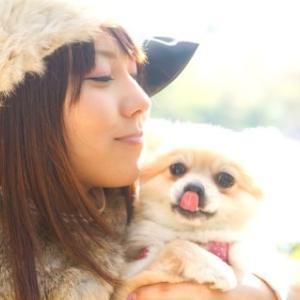 犬の名前付けで喧嘩する家族!犬を飼うって大変じゃない?(2)