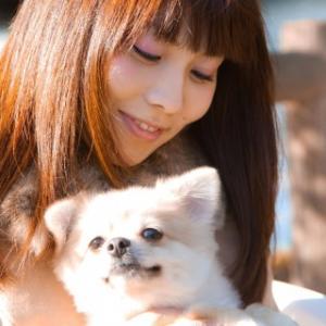 ペットショップで犬の家族が決まりました:犬を飼うって大変だ!(3)