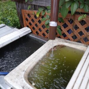 貯水バスタブに水をためていたら・・・