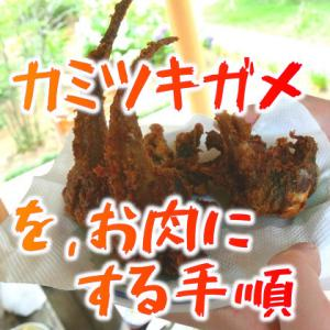 カミツキガメをお肉にする手順(後編) ~おいしくする下ごしらえと雑にうまい料理~