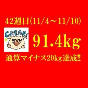 ダイエット開始からマイナス20kg達成!! 【ブログ公開ダイエット】294日目(2019年11月10日)&42週目結果91.4(週間-0.1)kg