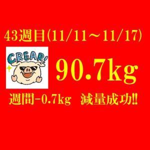 ついにアンダー90kgが射程圏内に!! 【ブログ公開ダイエット】301日目(2019年11月17日)&43週目結果90.7(週間-0.7)kg