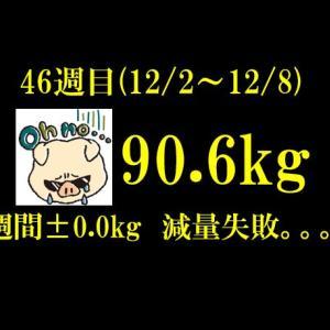 筋トレにプランクを追加! 【ブログ公開ダイエット】322日目(2019年12月8日)&46週目結果90.6(週間0.0)kg
