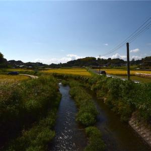 関吉の疎水溝 世界遺産 とっても雰囲気のある場所でした!!