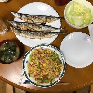 チャーハンとさんまの塩焼きを夕食に決定 とても暇に感じた1日