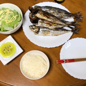 家族はのんきに外出 アジの塩焼きを夕食に決定