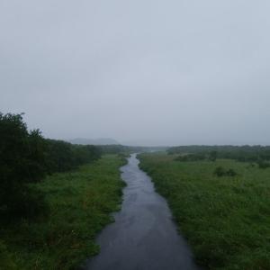 雨の日はジムニーで!橋の下フィッシング