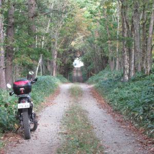 リハビリバイク・晴れの林道ツーリング