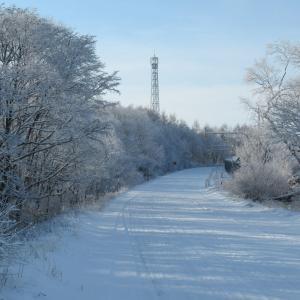 ジムニーで雪の林道へ・雪化粧の山景鑑賞へ