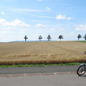 黄金色のメルヘンの丘