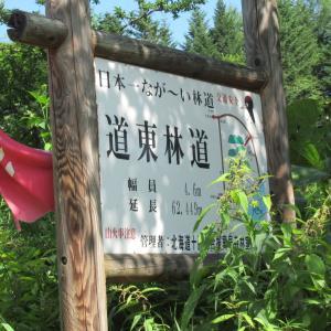 日本一長い林道?道東スーパー林道