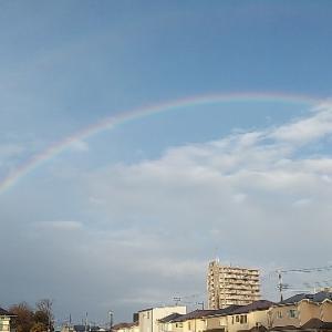 虹、でかっ!大雨の後の贈り物