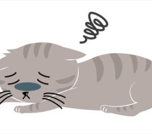 やさしい英語で英文法 It's like this cat 第2章 第3話