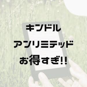 【最高の休日】Kindleアンリミテッドで0円で鬼読書しよう!